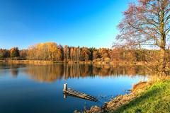 Teichgebiet Wolche  (1) (berndtolksdorf1) Tags: deutschland thüringen wolche teich jahreszeit herbst autumn wasser natur landschaft landscape