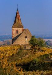 Hunawihr (Patrick Milano) Tags: églises automne alsace vignoble hunawihr vineyard november
