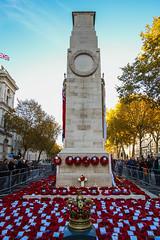 London Cenotaph (Lawrence OP) Tags: london cenotaph armistice100 2018 poppy wreath crown military