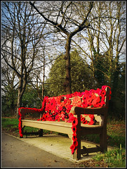Poppy seats........ (Jason 87030) Tags: bench poppy poppiues flowers pretty petals knitting wool remembrance war wi womensinstitute jasmine seat northamptonlane warks warwickshire road nice trees rugby bilton dunchurch red color colour respect 100 years january 2018 2019 uk england greatbritain unitedkingdom effort thanks image huawei mobile session tuesday look