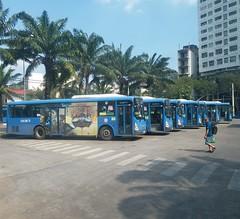 CNG buses in Ho Chi Minh city (phanphuongphi) Tags: buytsaigon cngbus ngvbus naturalgasbus