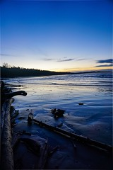 I'm blu. (Mjg.604) Tags: beautifulcanada bc britishcolumbia canada beautifulbc discoverbc explorebc goexplore bcbeaches bealpha a6000 sonya6000 sonyalpha sonyphotography tofinobc tofino vancouverisland wickaninnishbeach leftcoast shorelines westcoast pacificrimnationalparkreserve pacificbeaches thepacific lowlightphotography lowlight adventures sunrises earlymornings driftwood pacificocean beaches water theocean thesea sand blueskies bluehour blue