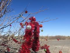 El Paso to Columbus-Highway 9 red sparklies 2 (Mzuriana) Tags: elpaso texas newmexico columbus highway9 decoratedtree redsparklies red