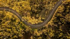 corkscrew_road_-3 (terencemay11) Tags: montacute southaustralia australia