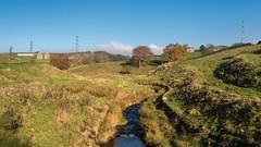 Arnfield Brook (Maria-H) Tags: brook stream hills arnfield derbyshire highpeak peakdistrict uk olympus omdem1markii panasonic 1235