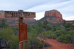 Sedona Arizona USA 2017 (Jeffrey Neihart) Tags: jeffreyneihart landscape nikon1680284 nikond7200 sandstone sandy redrock redroad cactus scrubbrush horizon arizona sedonaarizona hike hiking yavapai yavapaivista basalt trail trails