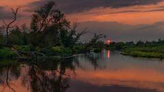 Following the light (piotrekfil) Tags: nature landscape sunset sun water river dusk twilight reflections tree summer pentax poland piotrfil