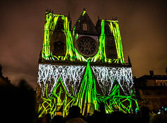 Growing divine greens (Phg Voyager) Tags: church lyon france ddl lights festival fun color outdoor city leica mp summilux 24mm night longexposure phgvoyager historical cathedral veggies front entrance great funny colorful photography people watching stjean