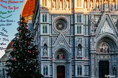 Natale a Firenze (danilocolombo69) Tags: danilocolombo69 abigfave danilocolombo firenze natale albero nikonclubit