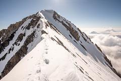 Dent Parrachée (Clem Belleudy) Tags: vanoise dentparrachée neige montagne alpinisme nature alpinism mountains aventure snow summit frenchalps adventure mountaineering aussois auvergnerhônealpes france fr