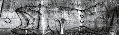 Graffiti Sur Le Mur De La Vie (MichelGuérin) Tags: 2018 canada exterior extérieur genredartvisuel graffitisurlemurdelavie graffitis lislet lisletsurmer lightroomcc michelguérin nature qc quaimiller québec september septembre sony sonycybershotrx100vi sonyrx100 sonyrx100vi été ca