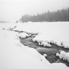 Apropos (Aaron Bieleck) Tags: hasselblad500cm 120film analog 6x6 square film filmisnotdead hasselblad mediumformat wlvf whiterivercanyon winter snow river mthoodnationalforest oregon pnw pacificnorthwest snowshoeing bw blackandwhite landscape snowscape forest outdoors 60mmct