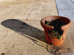 Ceci n'est pas une pipe (byzantiumbooks) Tags: planter broken shadow