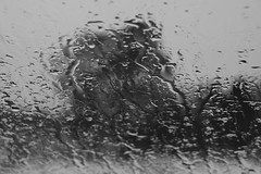 Wet Watery and Wintry Windscreen (steve_whitmarsh) Tags: aberdeen scotland scottishhighlands highlands bw monochrome blackandwhite water drip abstract topic cairngorms