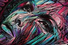 Portrait de femme (détail d'Alex et Hopare) (Edgard.V) Tags: streetart paris parigi alex hopare urban mural arte art urbano callejero femme female mulher retrao ritratto portrait