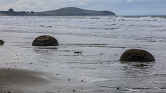 190315Stones5085w (GeoJuice) Tags: dunedin moeraki boulders concretions beach geography geology
