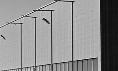 I I  the wall  I I (christikren) Tags: austria abstract blackwhite bw christikren facade grey lines monochrome österreich panasonic photography perspective sw linz spedition containerhafen structure
