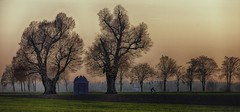 An evening ride (ramerk_de) Tags: sunset oberpfalz upperpalatinate kiefenholz ratisbone chapel bicycle trees tradition bavaria