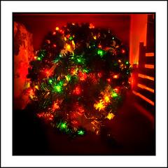 From the Top (Timothy Valentine) Tags: 2018 glow 1218 christmas home sliderssunday eastbridgewater massachusetts unitedstates us