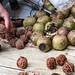 Maijishan walnuts