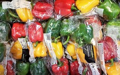 Mixed Peppers - Sainsbury's - Cheshire Oaks (Gilli8888) Tags: cameraphone samsung s7 cheshireoaks cheshire food peppers sainsburys supermarket shop mixedpeppers green yellow red vegetables