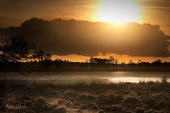 Sunset over Dutch lake (keesvandongen) Tags: heather sunset sunrise dusk dawn naturephotography nature mood light sunlight warm mist misty fog foggy water channel landscape landscapephotography skyscape sky night keesvandongen keske thenetherlands trees woods tree wood twilight