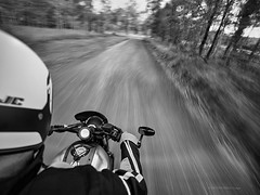 Need for speed (Petra Ries Images) Tags: motorbike motorcycle motorrad motorradfahrer rider speed yamahaxsr700 geschwindigkeit yamaha country countryroad dirtroad escape rural australia australien blur blurred motionblur vanishingpoint verschwommen blackandwhite schwarzweis monochrome