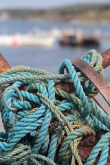 An Entanglement (peterkelly) Tags: digital canon 6d northamerica canada newfoundlandlabrador cavendish beach ropes blue metal trinitybay rust rusted rusty