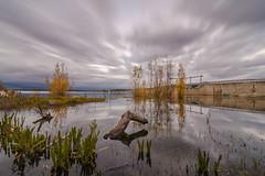 Reflejos. (Amparo Hervella) Tags: embalsedevalmayor comunidaddemadrid españa spain paisaje nube reflejo tronco naturaleza largaexposición nikon d7000 nikond7000 anochecer