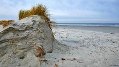 Schiermonnikoog: Northsea beach (Henk Binnendijk) Tags: schiermonnikoog noordzee noordzeestrand northsea northseabeach nederland netherlands dutch holland friesland fryslân sea zee strand beach plage duinafslag duinen