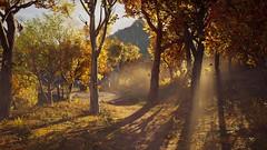 Autumn Trees (nicksoptima) Tags: trees autumn fall landscape assassins creed odyssey ubisoft screenshot