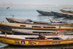 Boats Along The Ganges (shapeshift) Tags: d5600 in ranamahalghat asia banares benaras boats colorful davidpham davidphamsf documentary ganges gangesriver ghat ghats ghatsofindia india nikon riverfront shapeshift shapeshiftnet southasia steps streetphotography travel uttarpradesh waterfront varanasi banaras