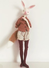 Mr Fox (Koshou) Tags: fox bjd doll anthro rabbit balljointeddoll bunny dollleaves dollchateau hybrid cute