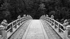 The bridge leading to Sangwonsa Temple (patuffel) Tags: 상원사 sangwonsa temple korea south bridge odaesan national park black white leica m10 autumn 28mm 20 animals stone bw
