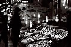 a look at the fish.. (n.okyayli) Tags: istanbul canont70 35mm film kodak blackandwhite analog fish