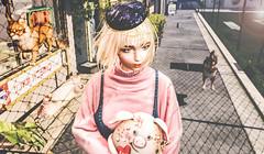 猪事顺利 (imp朣) Tags: secondlife second life pink pig dog cat