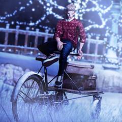 Winter Jumper (Satuex Resident) Tags: jumper christmas mossu jeans coldash versov trainers snekaers sneakers rkkn bike bicicle angelking male men man dude guy gay pose bento mesh