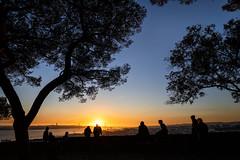 Winter solstice, Lisbon, December 21, 2018 (Ulf Bodin) Tags: lisbon wintersolstice canonef1635mmf4lisusm people outdoor portugal shadows silhouette lisboa solstíciodeinverno pine trees lissabon castelodesãojorge canoneosr miradourodocastelodesãojorge urbanlife pt sky sunset tree