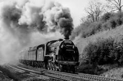 Steam on the BR Network (photofitzp) Tags: 30777 777 bw blackandwhite filmscan harburycutting mainline maunsell railways sr shakespeareexpress sirlamiel smoke steam