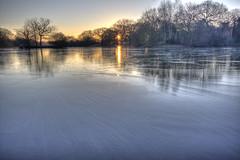 Ice (ArtGordon1) Tags: eppingforest london england uk leytonstone winter frozen reflections reflection hollowpond hollowponds davegordon davidgordon daveartgordon davidagordon daveagordon artgordon1 february 2019