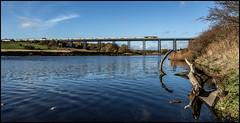 Wannie Wanderings (Blaydon52C) Tags: river wansbeck ashington blyth bedlington tyne northumberland northumbria rail railfreight colas gbrf class60 viaduct bridge water autumn 6n86