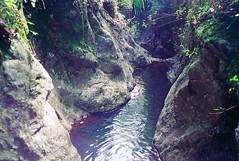 Kinnane's Falls 1 (NettyA) Tags: 1993 australia kinnanesfalls mainrangenationalpark qld queensland bushwalk bushwalking scannedprint scenicrim seqld