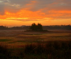 The Dawn will Break (barbara_donders) Tags: natuur nature sunset zonsopkomst zonsopgang colorful kleurrijk morning ochtend landschap landscape demoer mooi prachtig beautiful magisch magical