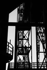 sciagram (petdek) Tags: silhouette blackandwhite monochrome stairs