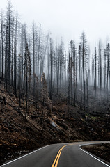 Fog & Burned - Yosemite (itsBryan) Tags: yosemite toyota tacoma sonyg sony sonyalpha sonya7r sonya7r2 sonya7rii fall snow hetchhetchy clouds carlzeiss canyons nationalpark nature norcal dynamicrange 1point4 park 2470mm 24mm 28mm 28point2 42megapxels 70200mm roadtrip offroad