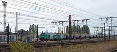 [FR-SNCF] BB 75415 + BB 27071cv MA100 N°54028 Saint-Pierre-des-Corps RC >>> Vierzon Ville FS 13/10/2018 DSC_2801_DxO (yael.flament1) Tags: train locomotives locomotive prima fret freight sncf bb75000 bb75400 bb27000 75415 bb75415 bb27071 27071 bb 27000 75000 75400 trémies céréalières sp spdc saintpierredescorps saint pierre des corps diesel thermique machines alsthom alstom siemens 54028