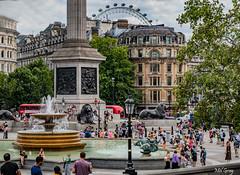 Trafalgar-Square_DSC9205 (Mel Gray) Tags: london england unitedkingdom
