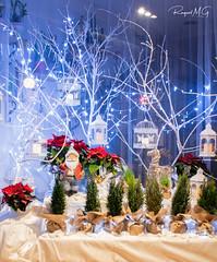 Decorado de Navidad (Raquel M.G.) Tags: tradicional celebraciones navidad colores blanco rojo nieve papánoel alegría luces farolillos azul brillante iluminación