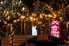 le lapin qui attend le Père Noël (Elyane11) Tags: lapin rue noël decorsville animation