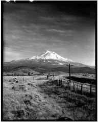 Mt. Shasta 181205 (jimhairphoto) Tags: mtshasta california america landscape remainsoftheday naturalworld 4x5project crown graphic camera mfg1963 4x5 ilford hp5 film blackandwhite blancetnoir schwarzweiss blancoynegro blancinegre siyahrebeyaz jimhairphoto